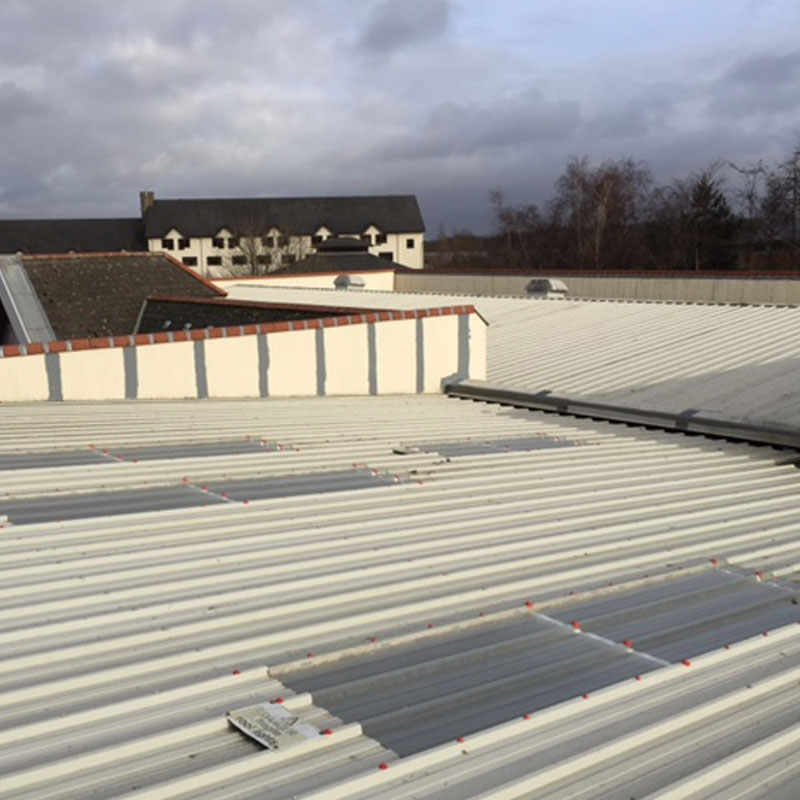 GRP Roof Lights Replacement Cardiff