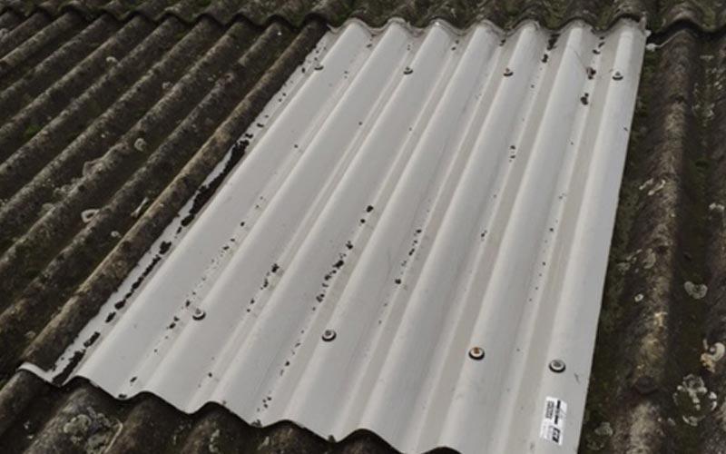 Dunlop DR sheet for rooflight