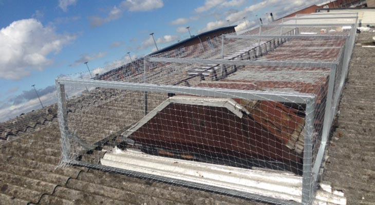 Pigeon netting installation in Birmingham