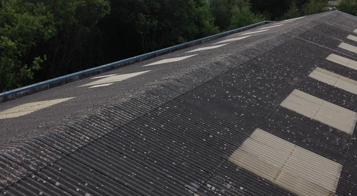 Asbestos cement roof with opaque rooflights